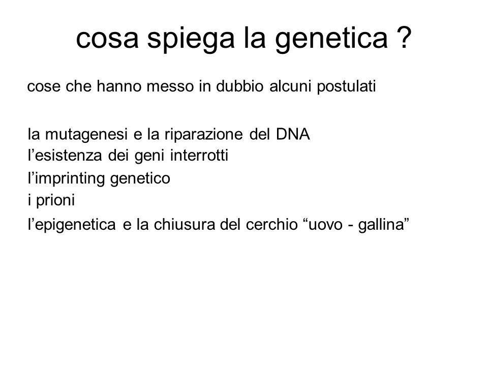 cosa spiega la genetica .