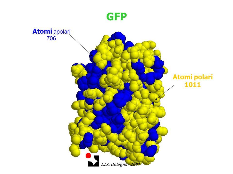 Atomi polari 1011 Atomi apolari 706 GFP LLC Bologna - 2007