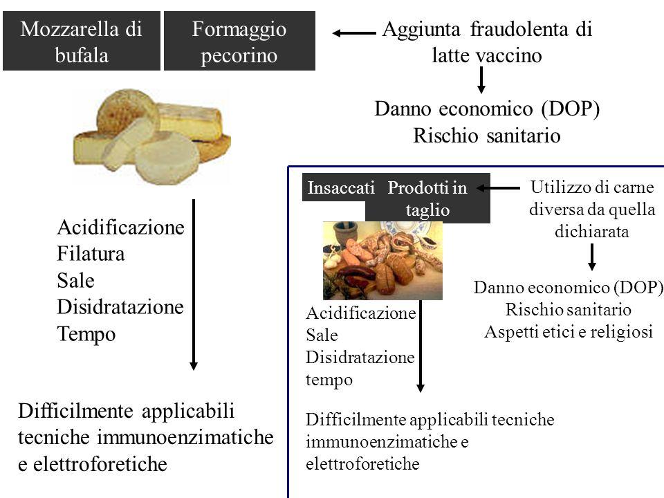 Mozzarella di bufala Formaggio pecorino Aggiunta fraudolenta di latte vaccino Danno economico (DOP) Rischio sanitario Acidificazione Filatura Sale Dis
