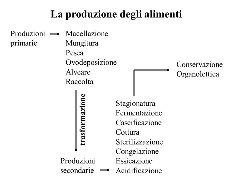 La produzione degli alimenti Macellazione Mungitura Pesca Ovodeposizione Alveare Raccolta Produzioni primarie Stagionatura Fermentazione Caseificazion