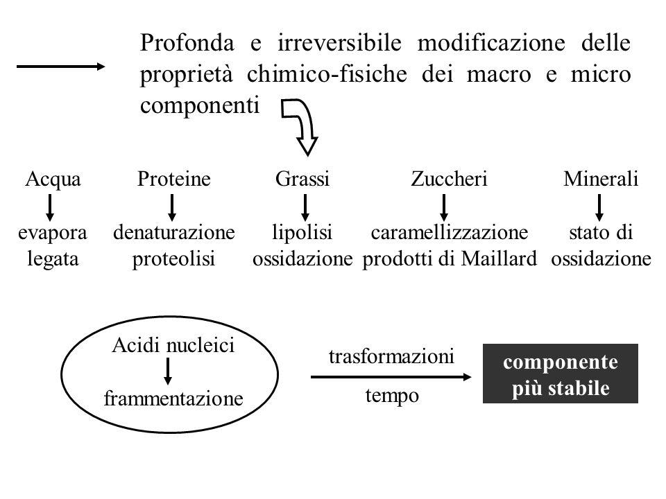 Profonda e irreversibile modificazione delle proprietà chimico-fisiche dei macro e micro componenti Acqua evapora legata Proteine denaturazione proteo