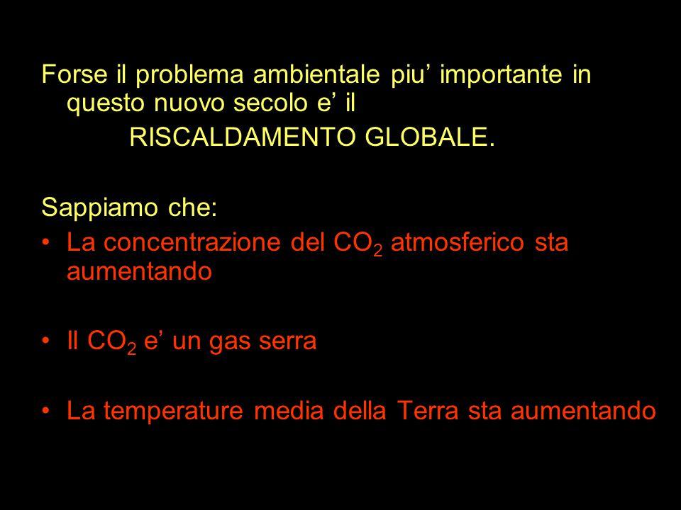 Forse il problema ambientale piu' importante in questo nuovo secolo e' il RISCALDAMENTO GLOBALE.
