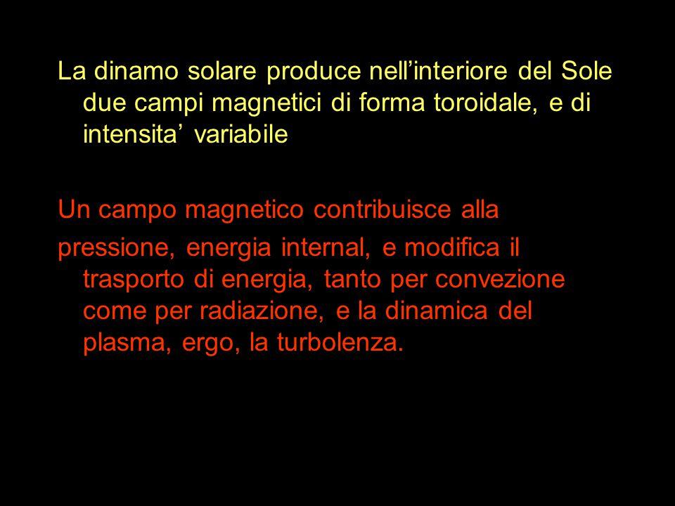 La dinamo solare produce nell'interiore del Sole due campi magnetici di forma toroidale, e di intensita' variabile Un campo magnetico contribuisce alla pressione, energia internal, e modifica il trasporto di energia, tanto per convezione come per radiazione, e la dinamica del plasma, ergo, la turbolenza.