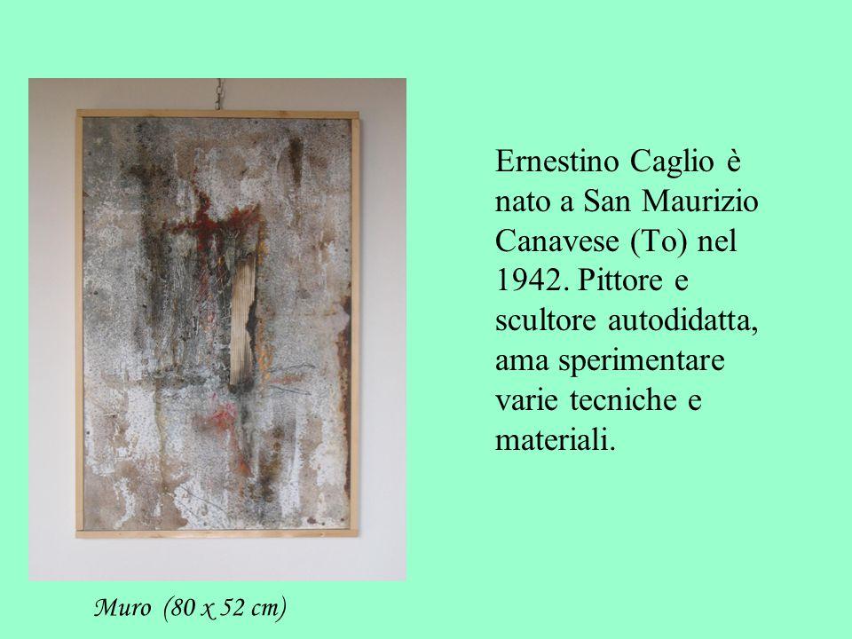 Ernestino Caglio è nato a San Maurizio Canavese (To) nel 1942.