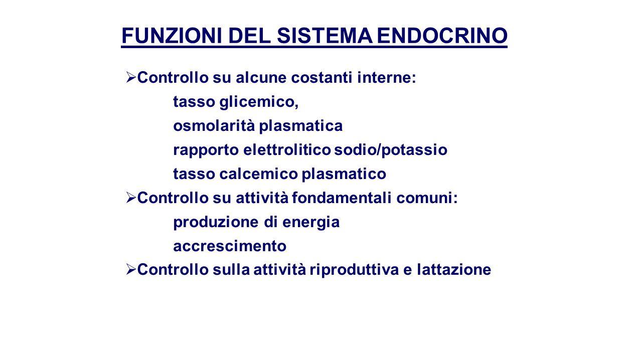 GHIANDOLE ENDOCRINE I principali organi proposti alla secrezione endocrina sono:  Sistema ipotalamo – ipofisi  Tiroide  Paratiroidi  Pancreas  Surreni  Gonadi: testicolo, ovaio