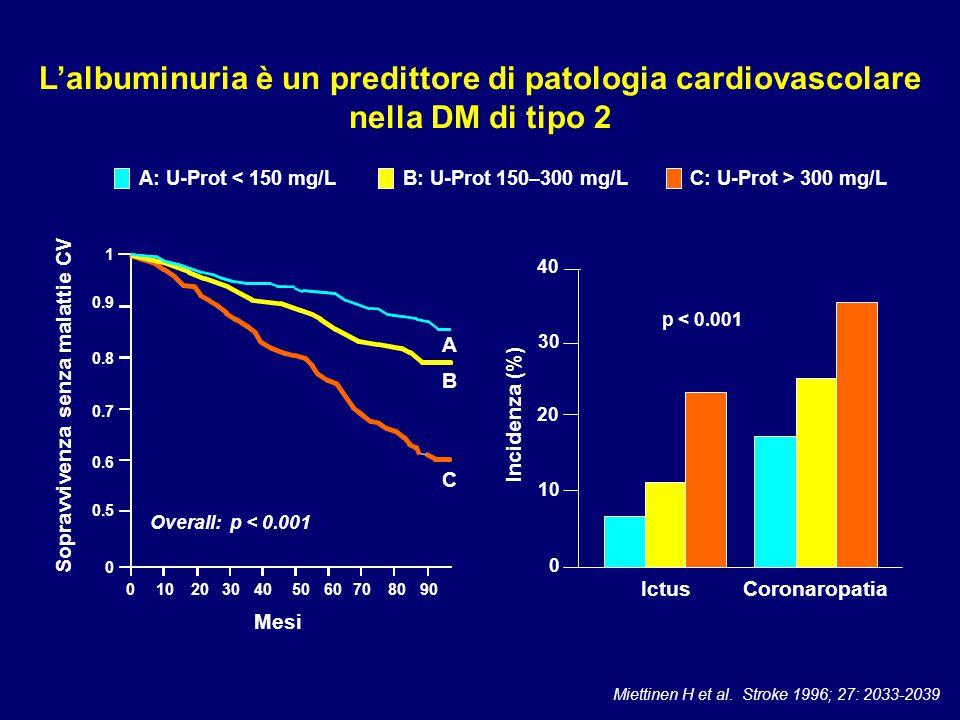 0.9 0.8 0.6 0.5 1 0.7 0 0102030405060708090 Mesi A B C Overall: p < 0.001 A: U-Prot < 150 mg/LB: U-Prot 150–300 mg/LC: U-Prot > 300 mg/L Miettinen H e