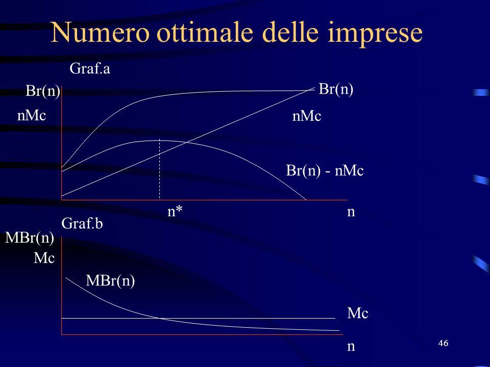 46 Numero ottimale delle imprese Br(n) nMc n Mc n MBr(n) Br(n) nMc Br(n) - nMc MBr(n) n* Graf.a Graf.b