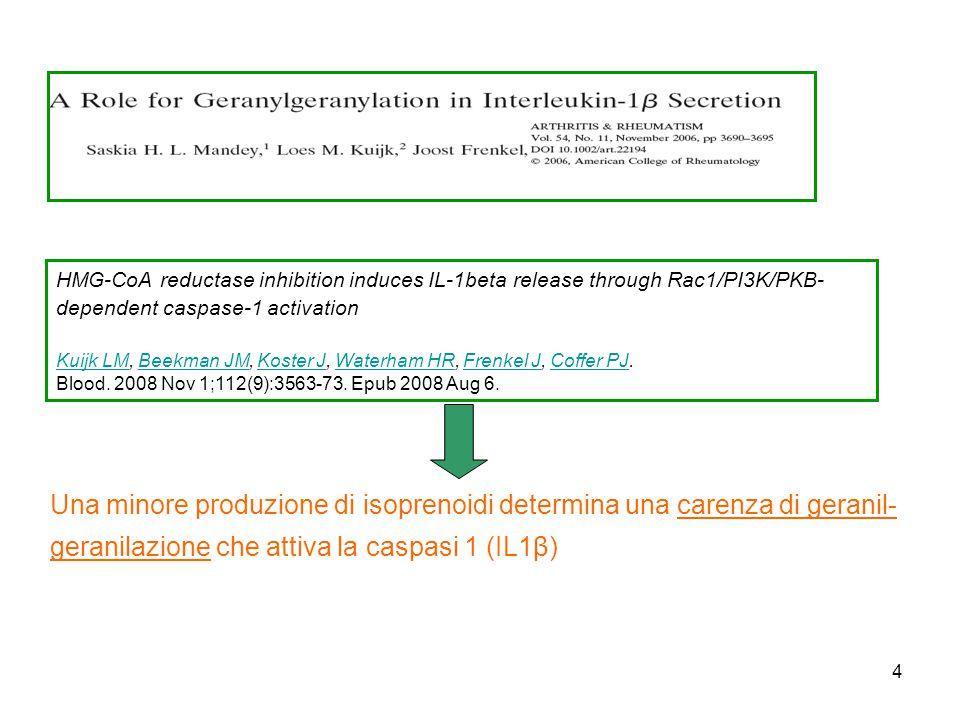 4 Una minore produzione di isoprenoidi determina una carenza di geranil- geranilazione che attiva la caspasi 1 (IL1β) HMG-CoA reductase inhibition induces IL-1beta release through Rac1/PI3K/PKB- dependent caspase-1 activation Kuijk LMKuijk LM, Beekman JM, Koster J, Waterham HR, Frenkel J, Coffer PJ.Beekman JMKoster JWaterham HRFrenkel JCoffer PJ Blood.