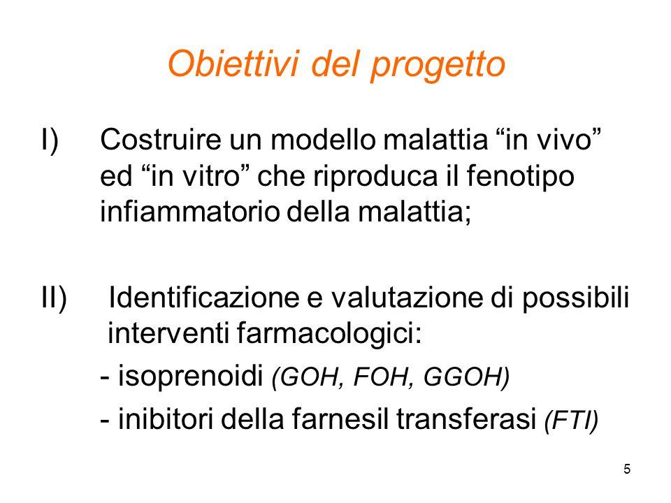 """5 Obiettivi del progetto I)Costruire un modello malattia """"in vivo"""" ed """"in vitro"""" che riproduca il fenotipo infiammatorio della malattia; II) Identific"""