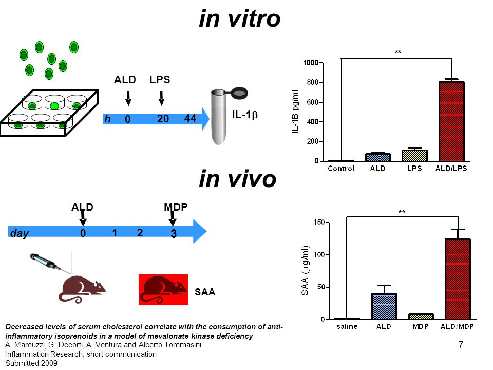7 in vitro IL-1  0 44 h20 LPSALD 1 3 day0 MDP 2 SAA ALD in vivo Decreased levels of serum cholesterol correlate with the consumption of anti- inflammatory isoprenoids in a model of mevalonate kinase deficiency A.