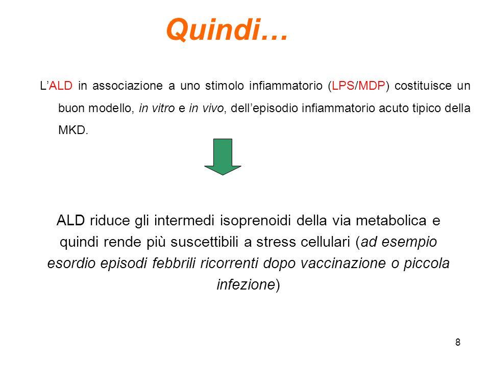 8 L'ALD in associazione a uno stimolo infiammatorio (LPS/MDP) costituisce un buon modello, in vitro e in vivo, dell'episodio infiammatorio acuto tipic