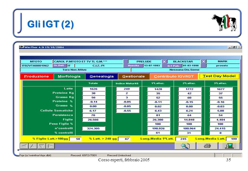 Corso esperti, febbraio 200535 Gli IGT (2)