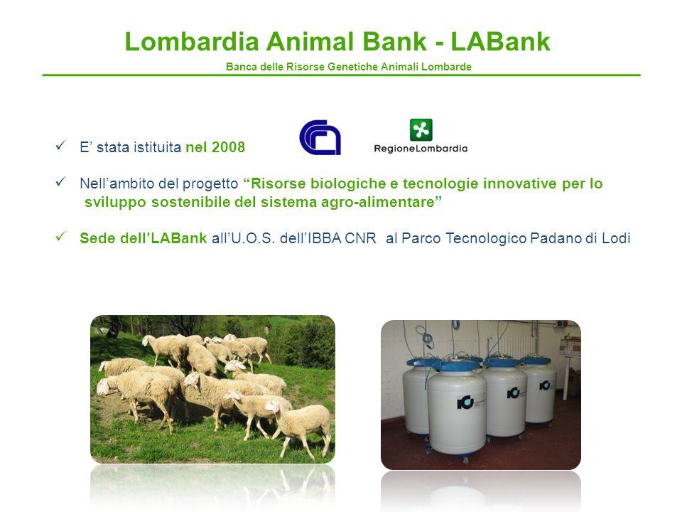Banca delle Risorse Genetiche Animali Lombarde Lombardia Animal Bank - LABank