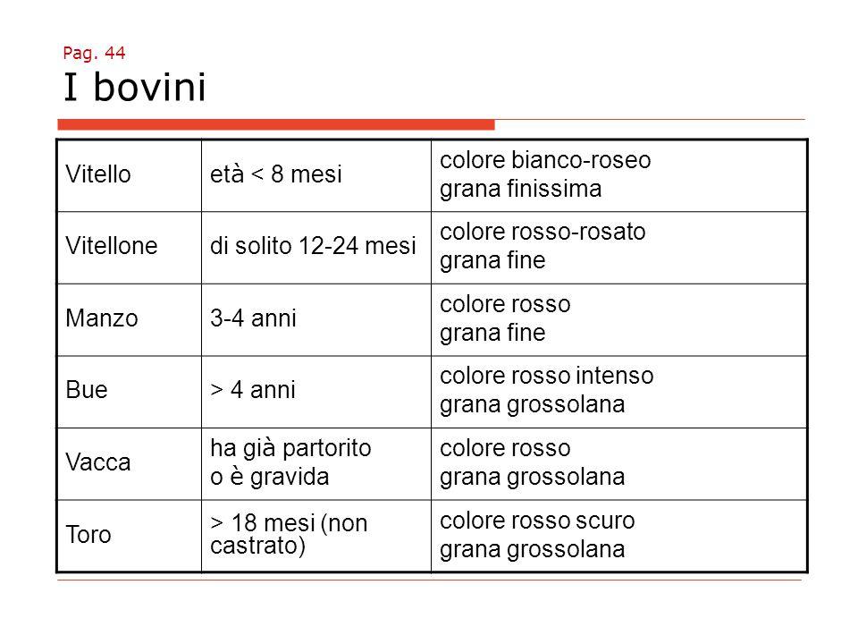 Pag. 44 I bovini Vitello et à < 8 mesi colore bianco-roseo grana finissima Vitellonedi solito 12-24 mesi colore rosso-rosato grana fine Manzo3-4 anni