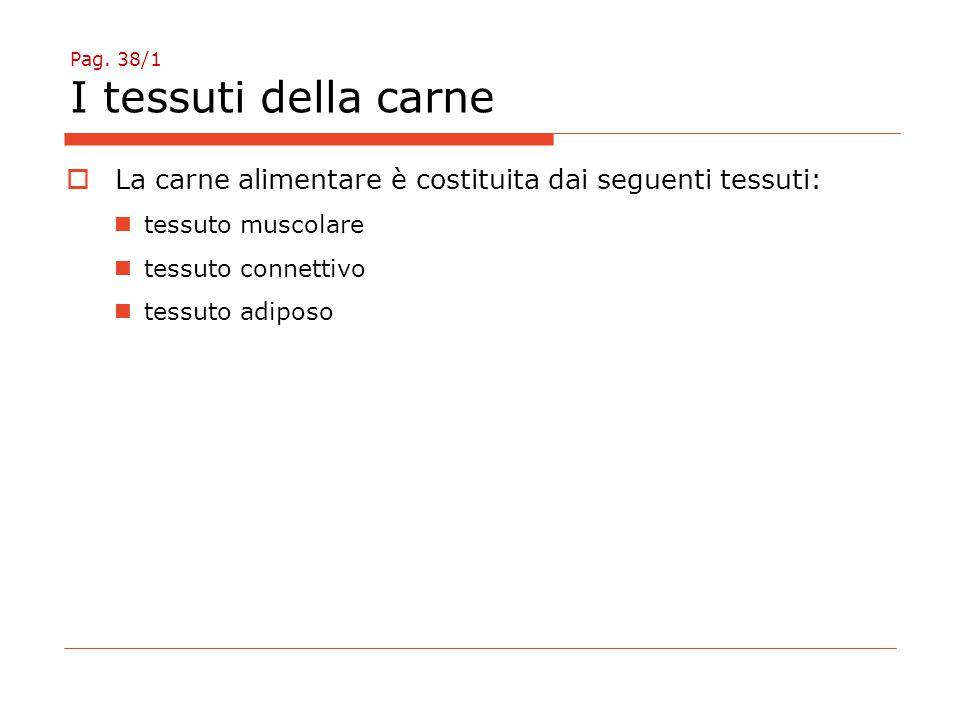 Pag. 38/1 I tessuti della carne  La carne alimentare è costituita dai seguenti tessuti: tessuto muscolare tessuto connettivo tessuto adiposo