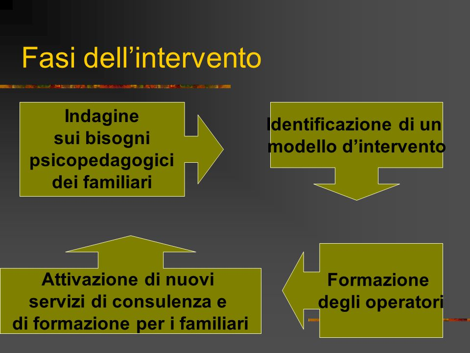 Fasi dell'intervento Identificazione di un modello d'intervento Formazione degli operatori Indagine sui bisogni psicopedagogici dei familiari Attivazione di nuovi servizi di consulenza e di formazione per i familiari