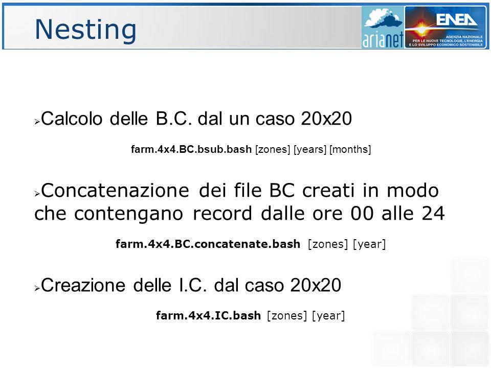 Nesting  Calcolo delle B.C. dal un caso 20x20 farm.4x4.BC.bsub.bash [zones] [years] [months]  Concatenazione dei file BC creati in modo che contenga