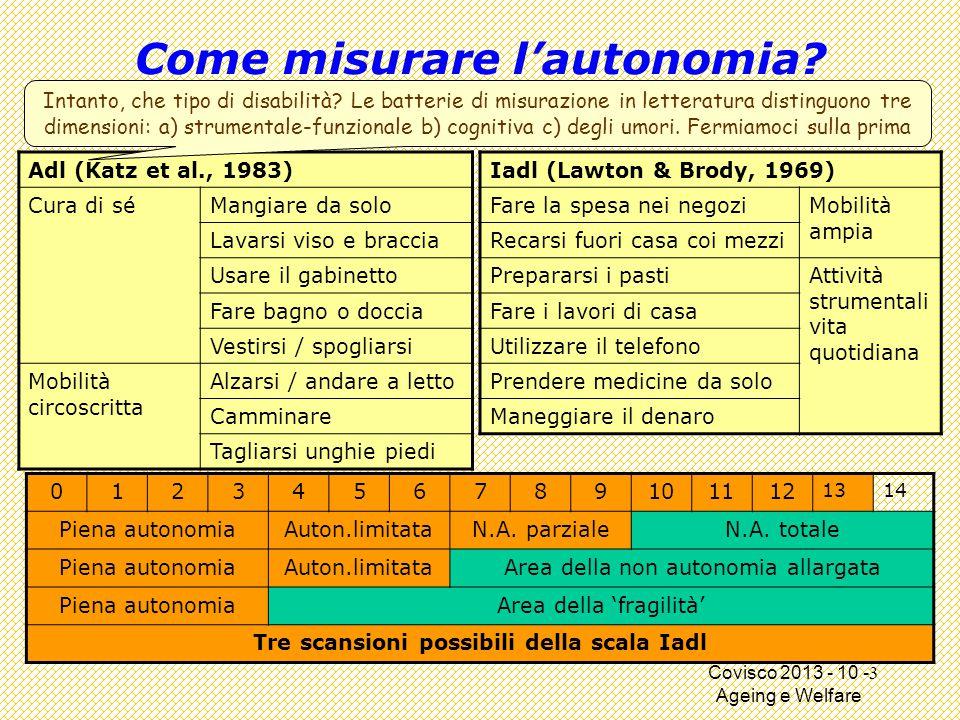 Covisco 2013 - 10 - Ageing e Welfare Come misurare l'autonomia.