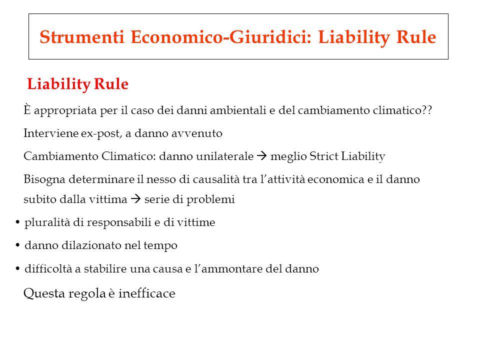 Liability Rule È appropriata per il caso dei danni ambientali e del cambiamento climatico .