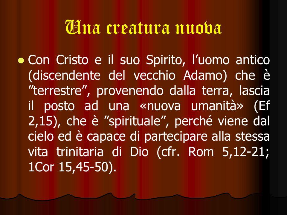 Una creatura nuova «Ciò che conta è l'essere nuova creatura» (Gal 6,15).