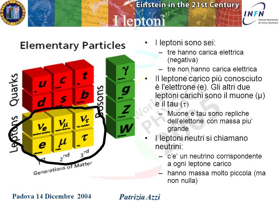 Padova 14 Dicembre 2004 Patrizia Azzi