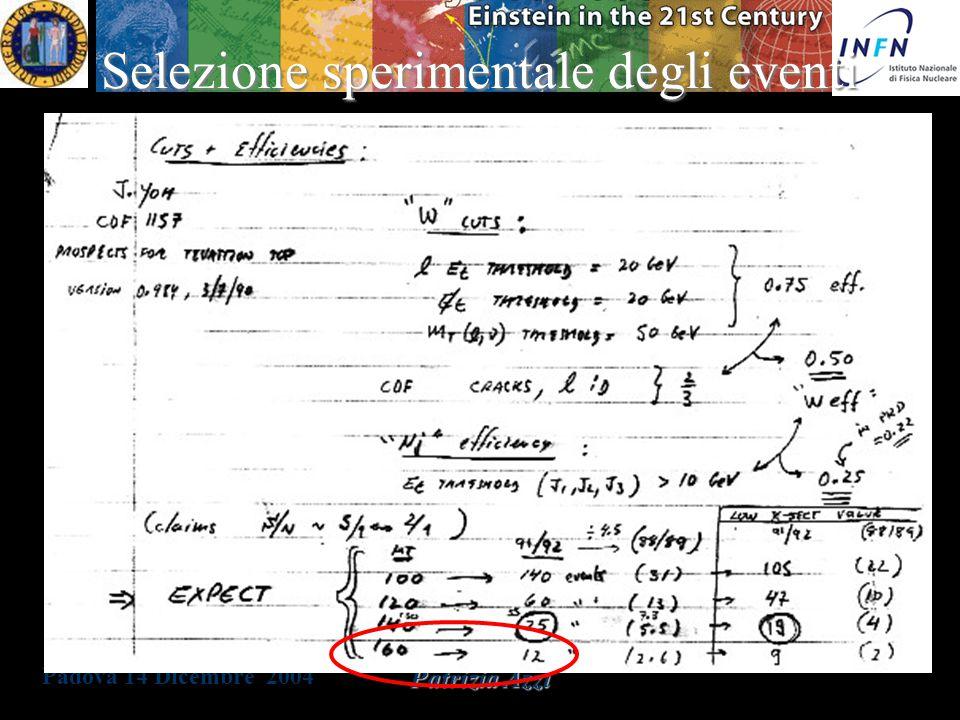 Padova 14 Dicembre 2004 Patrizia Azzi Predizioni teoriche