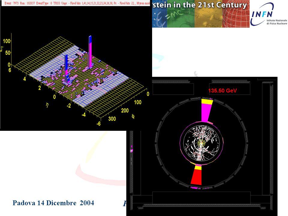 Padova 14 Dicembre 2004 Patrizia Azzi muon chambers steel HAD calorimeter EM calorimeter solenoid  jet muons e  electrons & photons quarks & gluons neutrinos  K,  etc.