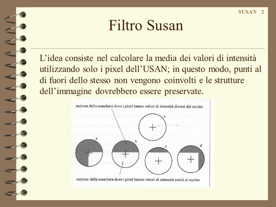 Filtro Susan SUSAN 3