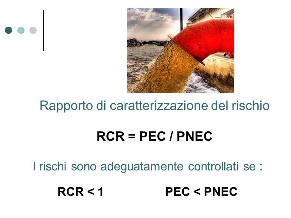 Rapporto di caratterizzazione del rischio RCR = PEC / PNEC I rischi sono adeguatamente controllati se : RCR < 1 PEC < PNEC