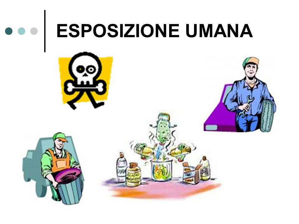 L'ambiente è esposto alle sostanze chimiche in tutte le fasi del loro ciclo di vita.