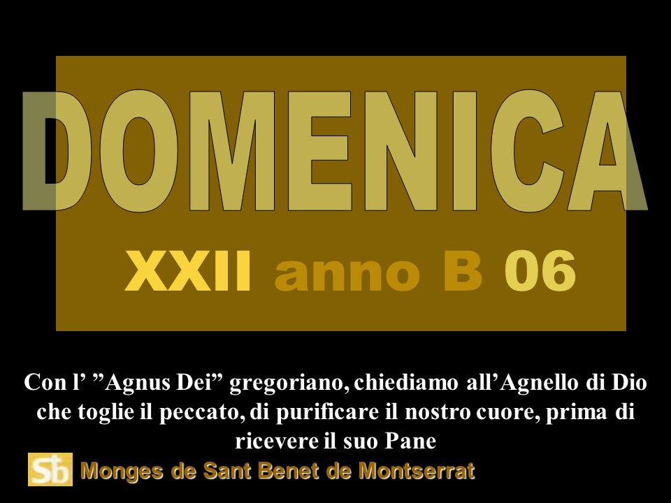 Monges de Sant Benet de Montserrat Con l' Agnus Dei gregoriano, chiediamo all'Agnello di Dio che toglie il peccato, di purificare il nostro cuore, prima di ricevere il suo Pane XXII anno B 06