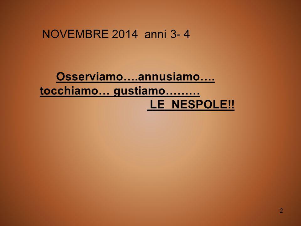 2 NOVEMBRE 2014 anni 3- 4 Osserviamo….annusiamo…. tocchiamo… gustiamo……… LE NESPOLE!!