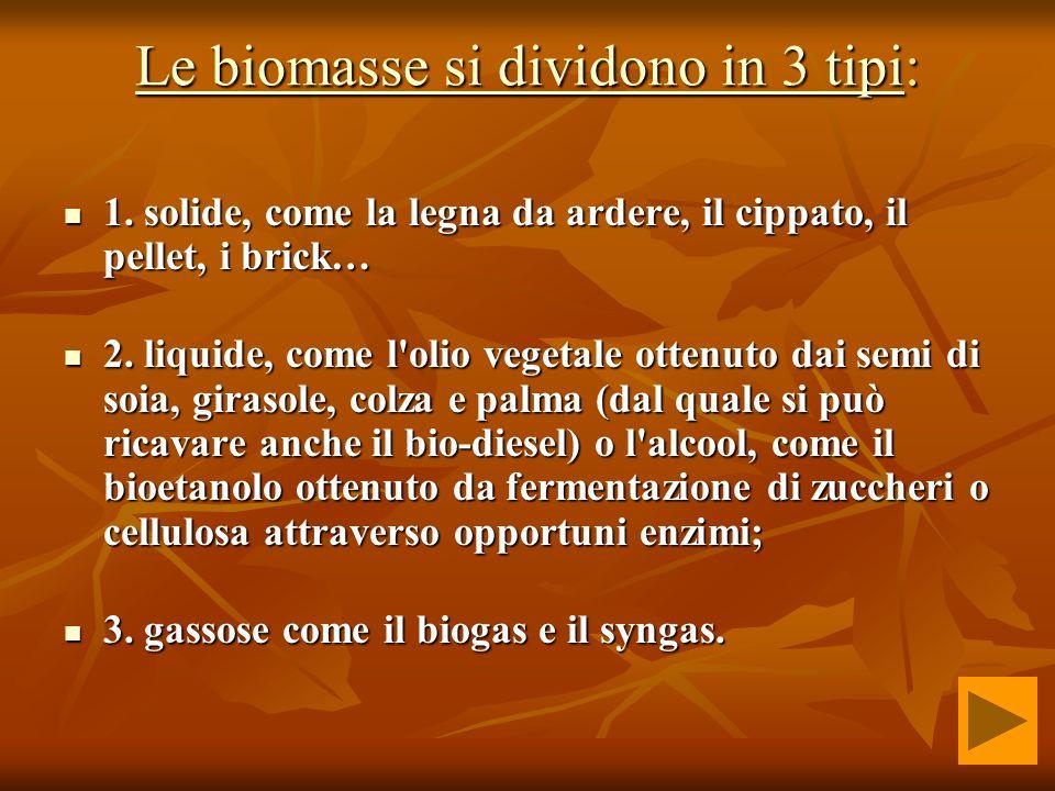 Le biomasse si dividono in 3 tipiLe biomasse si dividono in 3 tipi: Le biomasse si dividono in 3 tipi 1.