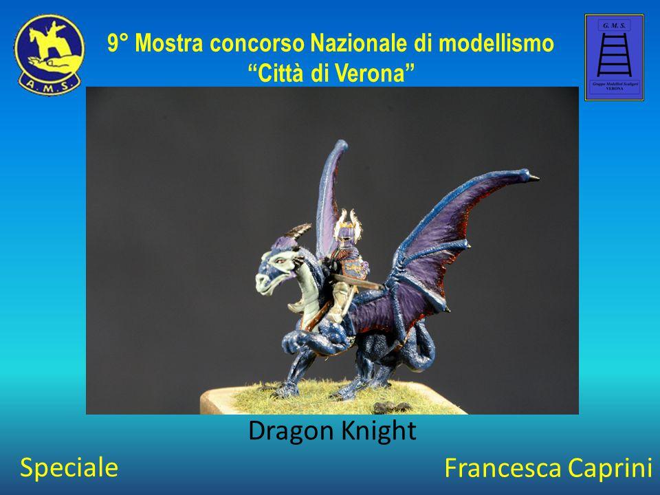 Dino Gargano Astronave Columbia BS6 9° Mostra concorso Nazionale di modellismo Città di Verona Speciale