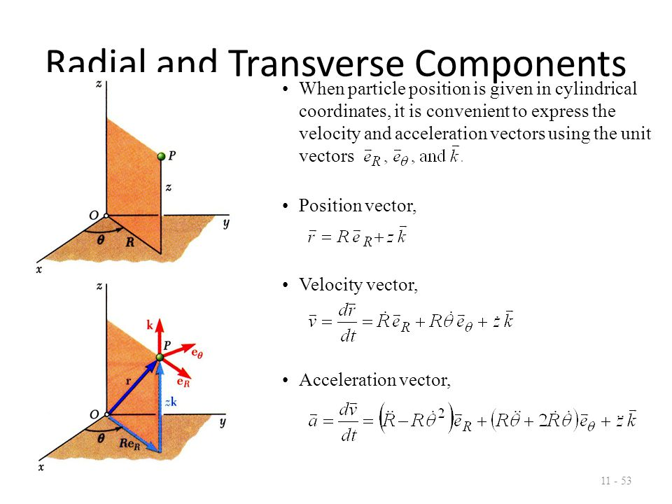 Radial and Transverse Components 11 - 53 When particle position is given in cylindrical coordinates, it is convenient to express the velocity and acceleration vectors using the unit vectors Position vector, Velocity vector, Acceleration vector,