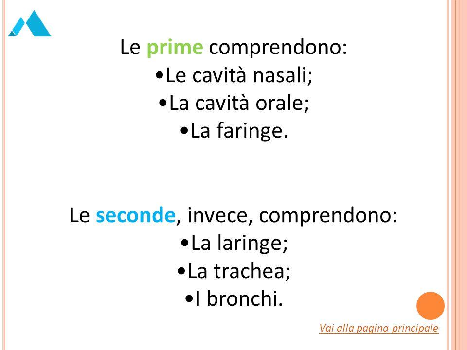 Le prime comprendono: Le cavità nasali; La cavità orale; La faringe. Le seconde, invece, comprendono: La laringe; La trachea; I bronchi. Vai alla pagi