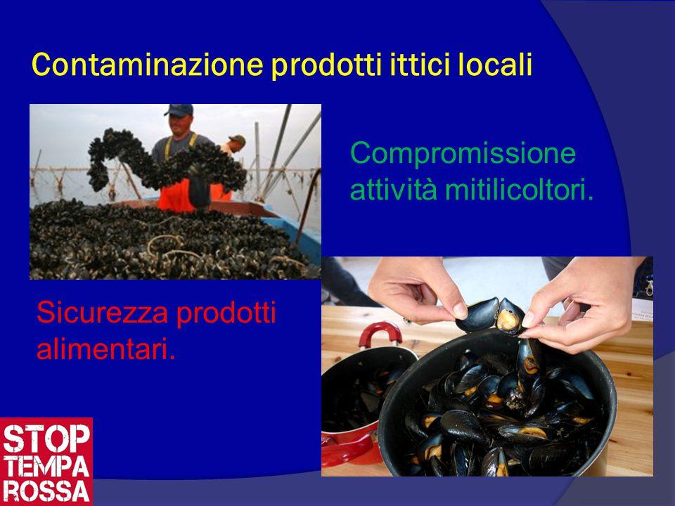 Contaminazione prodotti ittici locali Compromissione attività mitilicoltori.