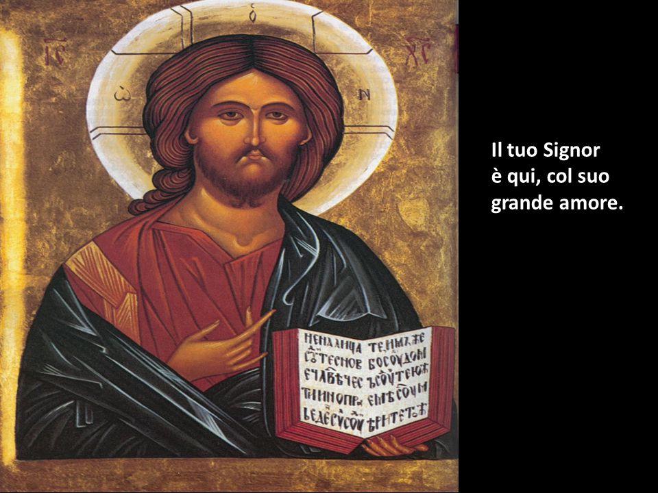 """A chi ha il cuore ferito tu dirai: """"Confida in Dio."""