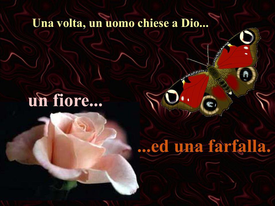 Una volta, un uomo chiese a Dio... un fiore......ed una farfalla.