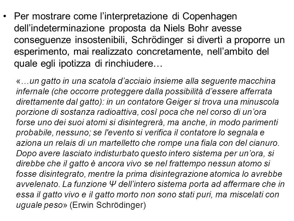 Per mostrare come l'interpretazione di Copenhagen dell'indeterminazione proposta da Niels Bohr avesse conseguenze insostenibili, Schrödinger si divert