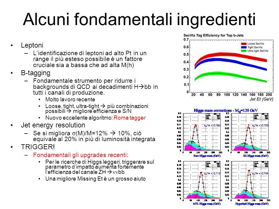 Alcuni fondamentali ingredienti Leptoni –L'identificazione di leptoni ad alto Pt in un range il più esteso possibile è un fattore cruciale sia a bassa che ad alta M(h) B-tagging –Fondamentale strumento per ridurre i backgrounds di QCD ai decadimenti H  bb in tutti i canali di produzione.