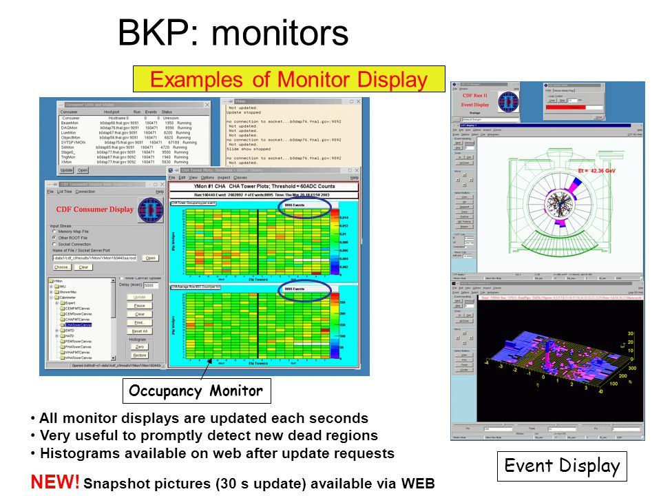 Examples of Monitor Display Occupancy Monitor Event Display All monitor displays are updated each seconds Very useful to promptly detect new dead regions Histograms available on web after update requests NEW.