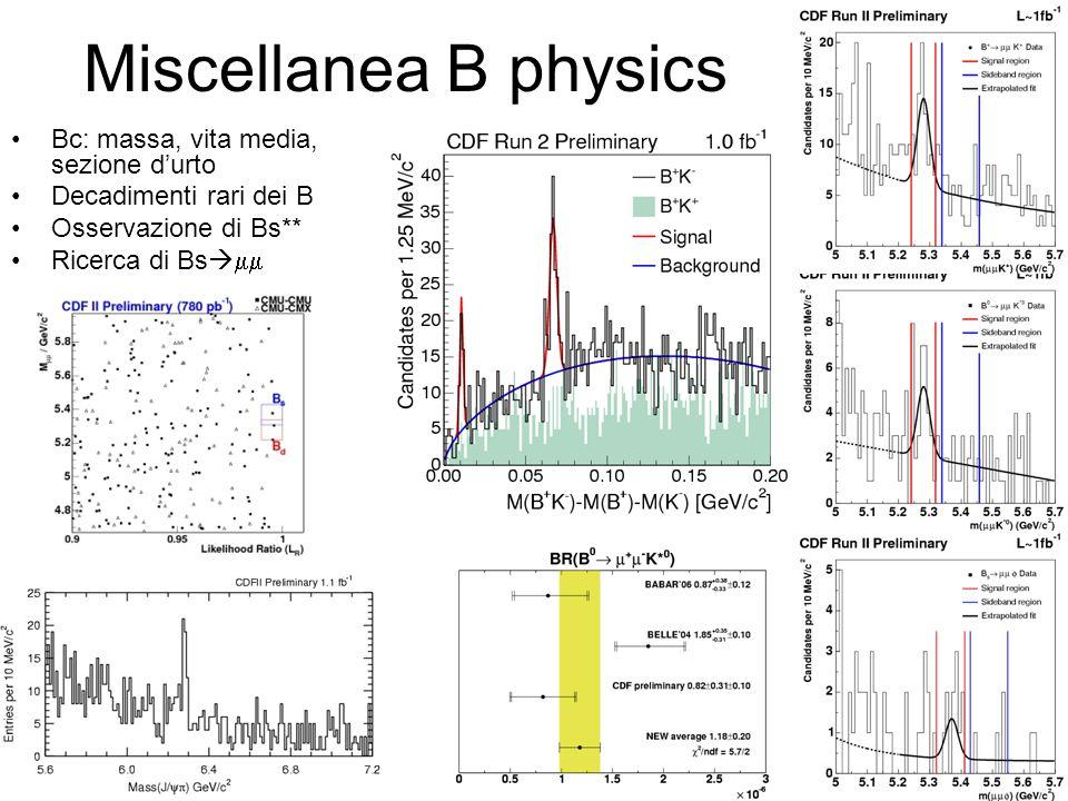 Miscellanea B physics Bc: massa, vita media, sezione d'urto Decadimenti rari dei B Osservazione di Bs** Ricerca di Bs  