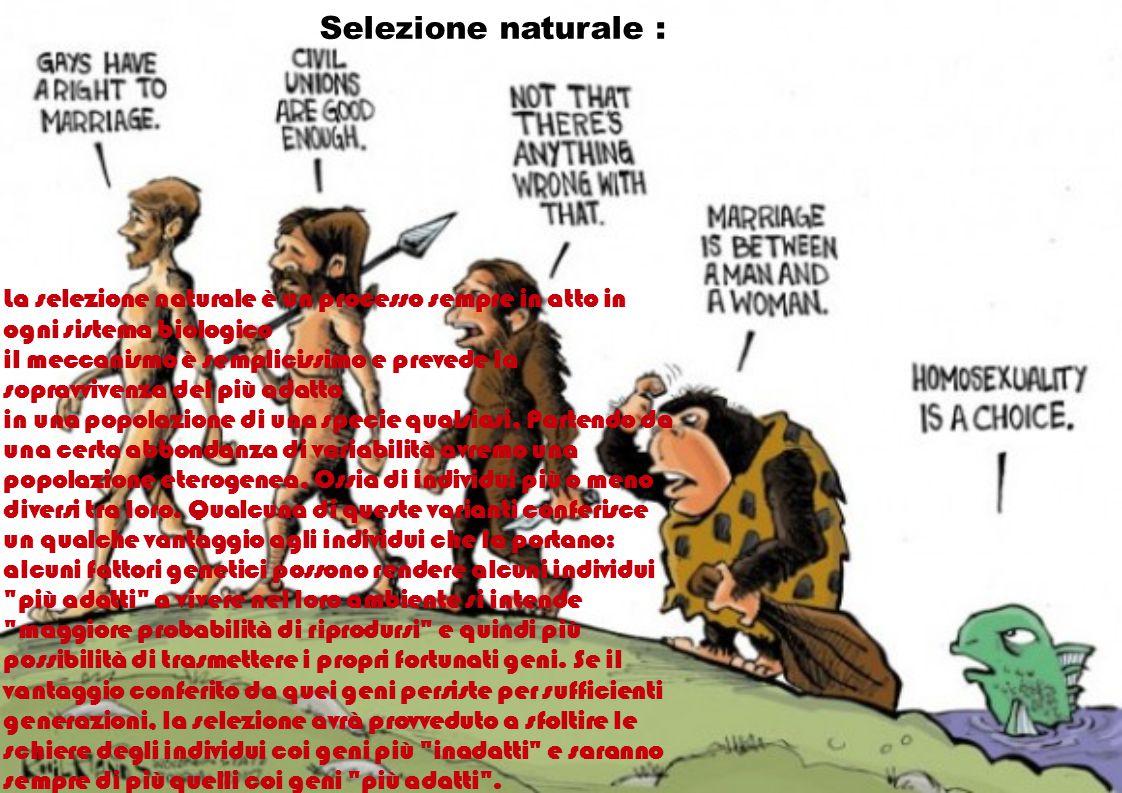 Selezione naturale : La selezione naturale è un processo sempre in atto in ogni sistema biologico il meccanismo è semplicissimo e prevede la sopravviv