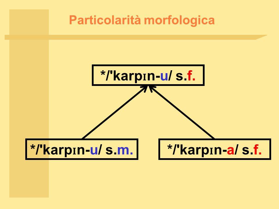 Particolarità morfologica */ karp ɪ n-u/ s.f. */ karp ɪ n-u/ s.m.*/ karp ɪ n-a/ s.f.