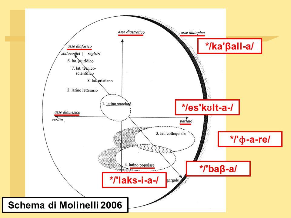 Schema di Molinelli 2006 */ka βall ‑ a/ */es k ʊ lt ‑ a ‑ / */ laks ‑ i ‑ a ‑ / */ baβ ‑ a/ */ ɸ‑ a ‑ re/