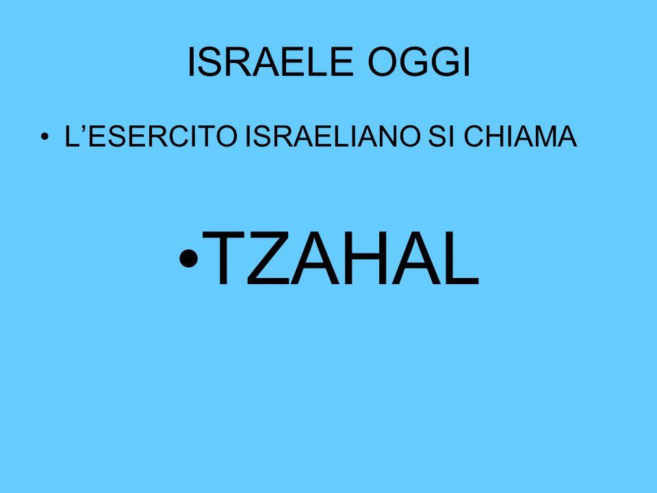 ISRAELE OGGI L'ESERCITO ISRAELIANO SI CHIAMA TZAHAL