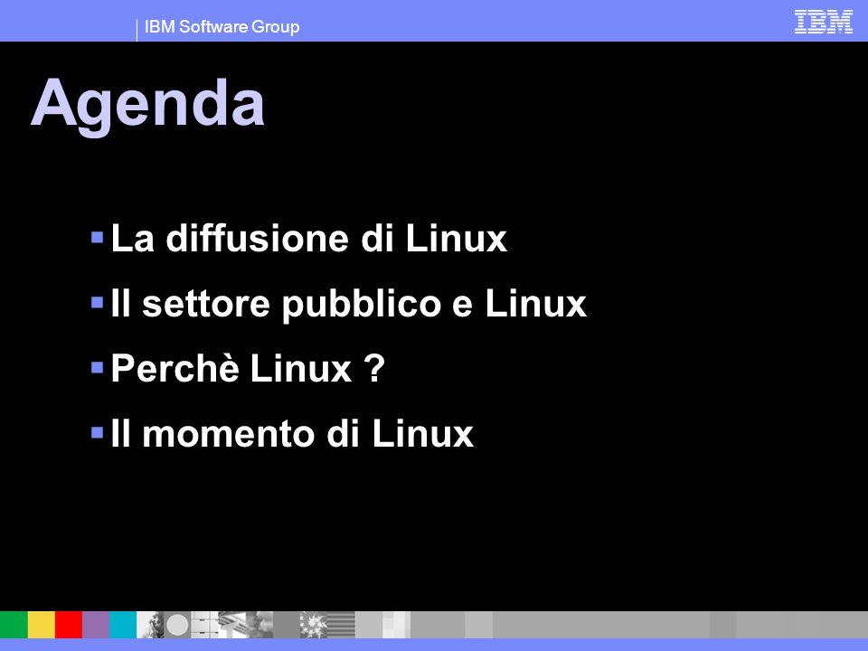 IBM Software Group Agenda  La diffusione di Linux  Il settore pubblico e Linux  Perchè Linux ?  Il momento di Linux