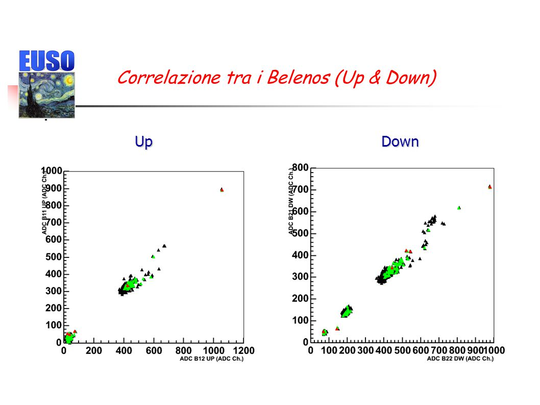 Correlazione tra i Belenos (Up & Down) DownUp