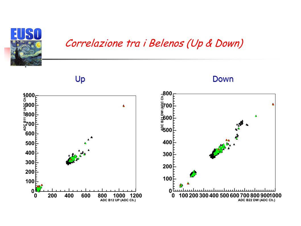 Single p.e. distribution & spectrum ✴ Uniformity: ~3